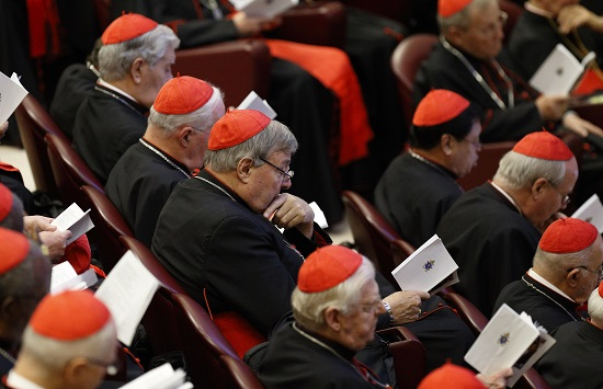 The Synod of Bishops on the family is winding down. (CNS photo/Paul Haring)