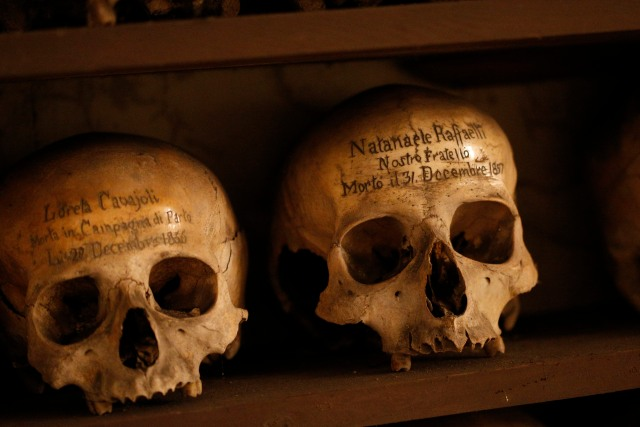 Skulls of a woman who died in childbirth and a member of a confraternity for burying the dead rest in the crypt of the Church of St. Mary of the Oration and Death, the headquarters of a confraternity with a legacy of burying the dead. (CNS/Paul Haring)