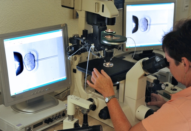 A laboratory director inspects the microinjection of sperm into an egg cell using a microscope in 2011 at a vitro fertilization clinic in Leipzig, Germany. A California state judge's ruling that a now-divorced couple's five frozen embryos must be destroyed is an example of doing something that technology allows without considering all aspects, say medical ethicists. (CNS photo/Waltraud Grubitzsch, EPA)