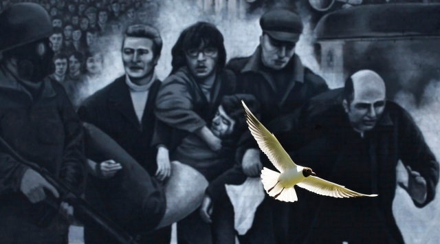 A seagull flies past a mural representing the famous scene on Bloody Sunday when a group of men, led by then-Father Edward Daly, right, carried the body of shooting victim Jackie Duddy. (CNS/Reuters)