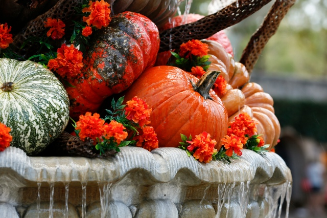 A bounty of fall pumpkins and flowers are displayed at the Tlaquepaque Arts and Crafts Village in Sedona, Ariz. The first Thanksgiving feast was marked in 1621 at Plymouth to celebrate a good harvest. (CNS/Nancy Wiechec)